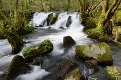 Blurred image of water in the waterfall Royalty Free Stock Photos