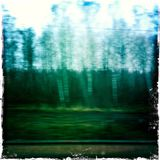 Blurred landscape taken from fast train. Blurred image taken from a window of a fast train in Ukraine Royalty Free Stock Photography