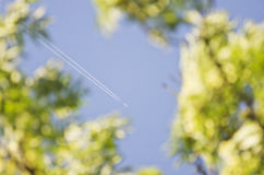 Blurred leaves and plane's track on blue sky.Diagonal aeroplane trace Royalty Free Stock Photo