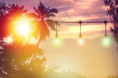 Blurred light with coconut palm tree background on sunset royalty free stock photography