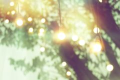 Blurred light on sunset with yellow string lights decor in tree stock images