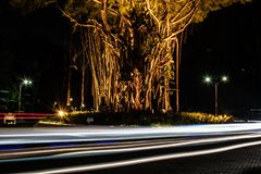 Blurred motion of a ray of light on the road next to the chimerical Indonesian tree. Interesting and abstract lights in. Speed light motion on the night highway stock photo