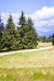 Blurred Mountain Pathway. Lensbaby Shot Royalty Free Stock Photography