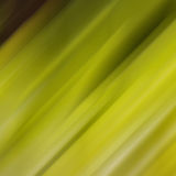 Blurred moved green background Royalty Free Stock Images