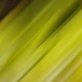 Blurred movió el fondo verde Imágenes de archivo libres de regalías