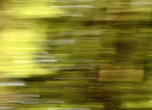 Blurred moving the country Stock Images
