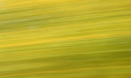 Blurred Nature 3 Stock Images