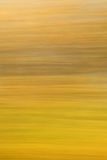 Blurred Nature 5 Royalty Free Stock Image
