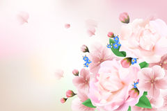 Blurred pastel background with flower petals. Stock Image