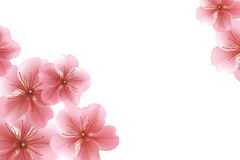 Blurred pastel background with flower petals. vector illustration