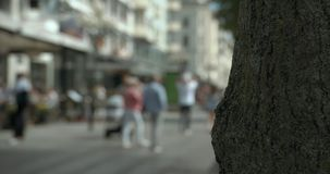 Blurred people walking on a shopping street in Gothenburg, brown tree foreground. stock video footage