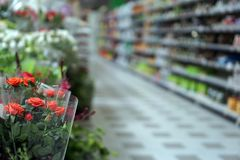 Blurred photo of a flower department in Italy. Blurred photo of a flower department in a supermarket economy customer mall rack goods consumer warehouse discount stock images