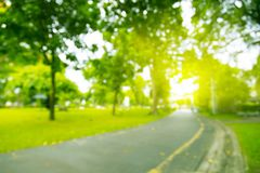 Blurred photo Park walkways with green trees with morning sun. Blurred photo Park walkways with green trees stock image