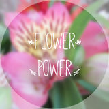Blurred photographic background and text Flower power. Vector illustration. Blurred photographic background with orchid, Monstera and text Flower power Royalty Free Stock Photos