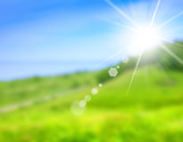 Blurred picture of green field Royalty Free Stock Images