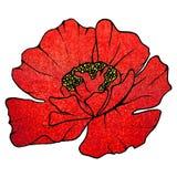Blurred red scarlet glitter flower poppy background texture Stock Photo