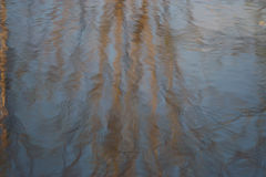 Blurred reflection of the forest water background Royalty Free Stock Photos