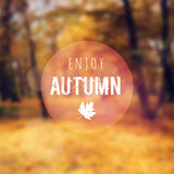 Blurred retro card with autumn, fall forest,  Stock Photos