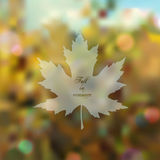Blurred romantic fall background. With maple leaf silhouette Stock Image