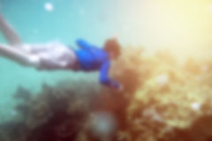 Blurred scene men wear blue diving coral reef Royalty Free Stock Image