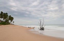 Blurred seascape at dusk Stock Image