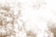 Blurred sepia bokeh of nature . Royalty Free Stock Images
