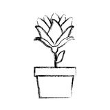 Blurred silhouette bud flower in pot. Illustration Stock Photo