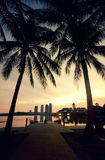 Blurred silhouette image at the lakeside during sunrise. coconut tree, building and the reflection on the lake. Yellow color on the sky Stock Images