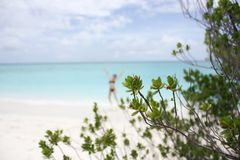 Blurred silhouette of the jumping girl on the white sandy beach on the Kuramathi Maldives island in the summer vacation.  Stock Image