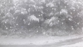 Blurred snowing background. Royalty Free Stock Photos