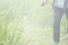 Blurred spraying weed pesticide in agriculture and growing organic food on the mountain Royalty Free Stock Photography