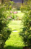 Blurred spring garden Royalty Free Stock Images