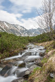 Blurred stream in Tatra mountains Stock Image