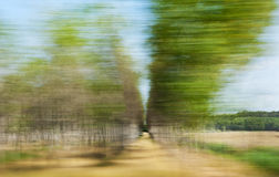 Blurred trees Stock Photography