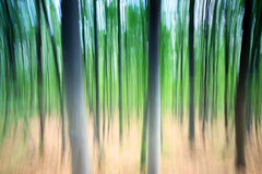 Blurred trees Stock Photos