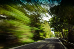 Blurred trees and road while driving in country. Motion blur of trees and street while traveling down a rural country backr oad Royalty Free Stock Photo