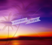 Blurred tropical background Stock Image