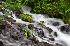 Blurred water of cascade falls Stock Image