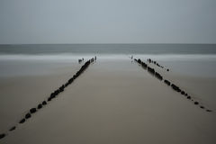 Blurred water with groin. In the morning at Sylt near Westerland Royalty Free Stock Photo