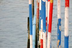 Colorful bamboo poles in the river royalty free stock image