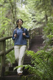 Blurred Woman Walking Down Forest Stairs Stock Images