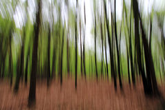 A blurred wood Royalty Free Stock Photo