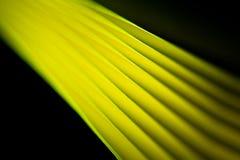 Blurred Yellow Paper Background Stock Photo