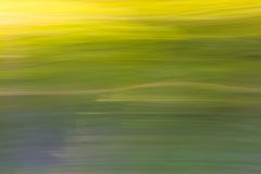Blurry abstract background of green summer forest Royalty Free Stock Photos