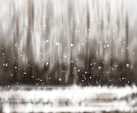 Blurry abstract bokeh lights on nature background royalty free illustration