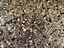 Blurry Backgroud of holes of cutting bamboo abstract background. stock photo
