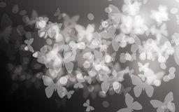 Blurry  Butterfly bokeh background Royalty Free Stock Photography