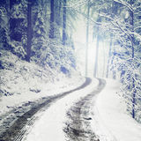 Blurry fantasy winter forest road. Blurry fantasy color, snowy and icy winter forest road Stock Photography