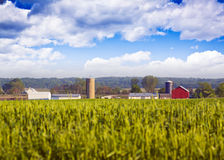 Blurry Field with Farm Buildings Royalty Free Stock Photos