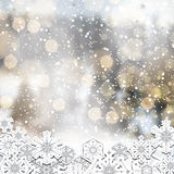 Blurry forest silver white background. Blurry forest background with frozen snowflakes Royalty Free Stock Images